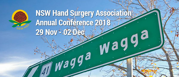 NSWHSA Conference 2018